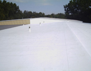 Single Ply Roof 1